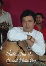 Chehra Hai Ya Chand Khila Hai Lyrics