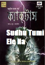 Sudhu Tumi Ele Na Song Lyrics
