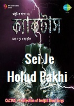 Sei Je Holud Pakhi Lyrics